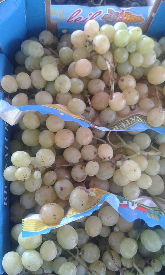 raisin blanc danlas 5.80€ le kilo