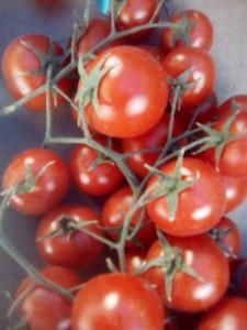 Tomate  cerise grappe espagne  5.80€ le kilo