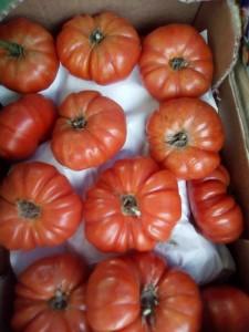 Tomate marmande ou noire espagne  4.30€ le kilo
