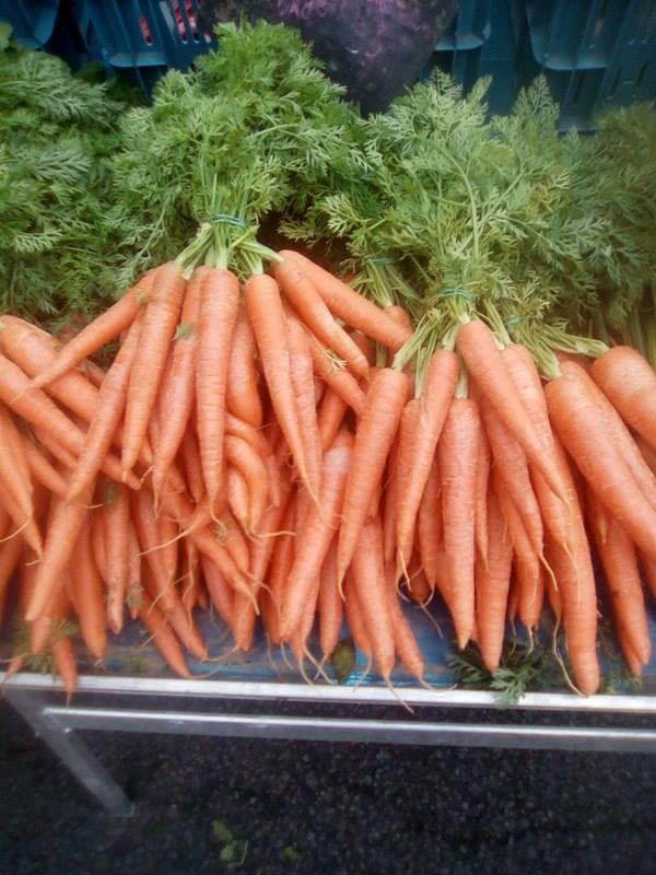 carotte botte region 2.80€ piece