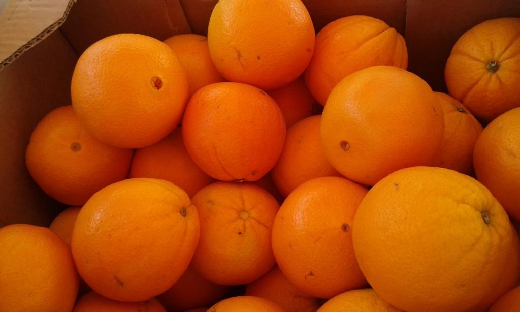 Orange à Jus  navel italie 2.40€ le kilo et +3 kg 2.20€ le kilo