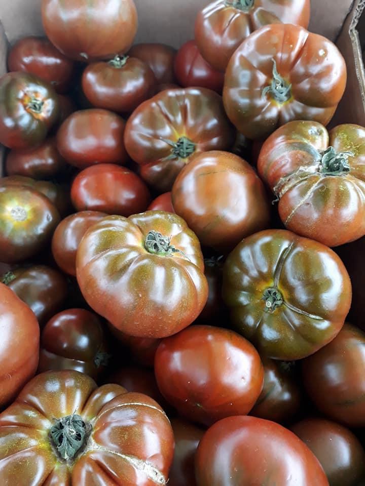 Tomate noire france 580€ le kilo