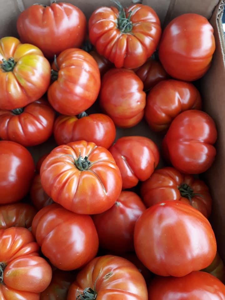 Tomate variete ancienne coeur de boeuf  france 5.20€ le kilo