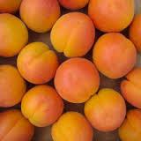 abricot roussillon FRANCE 7.80 euros le kilo