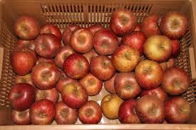 Pomme booskop région 2.80€ le kilo