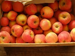 pomme gala france  3.80€ le kilo