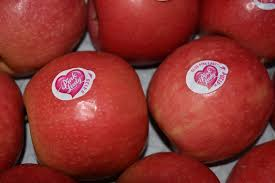 pomme crimps pink  bio france 4.20€ le kilo